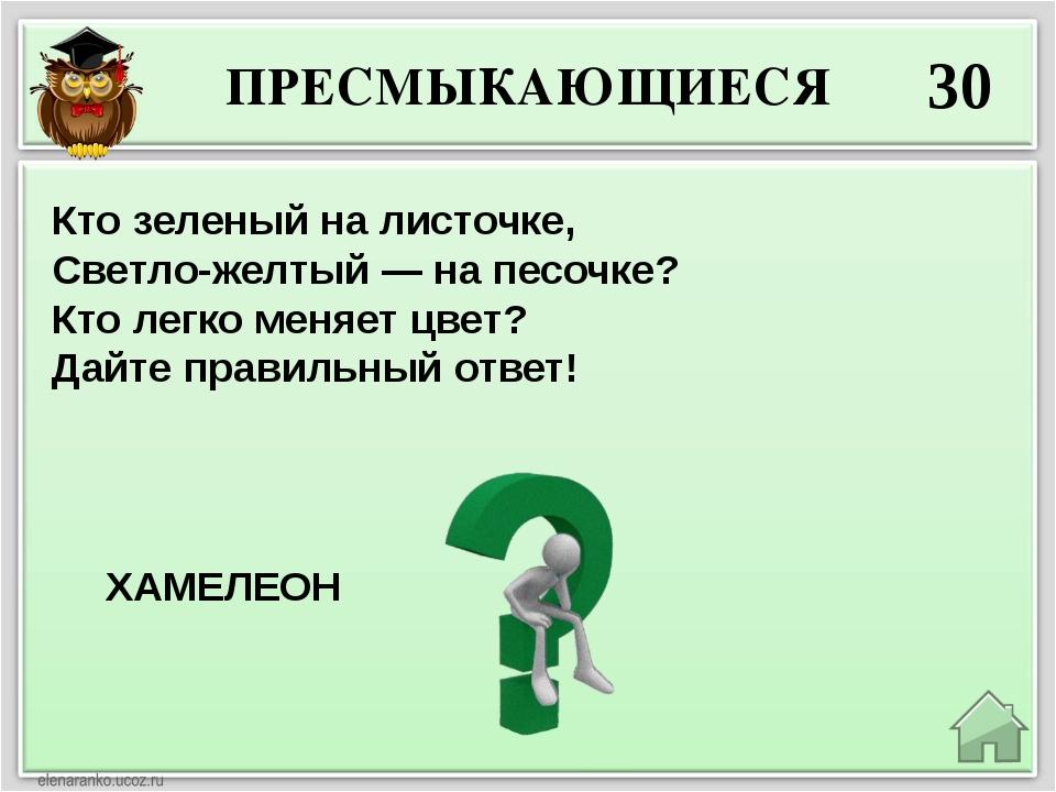 ПРЕСМЫКАЮЩИЕСЯ 30 ХАМЕЛЕОН Кто зеленый на листочке, Светло-желтый — на песочк...