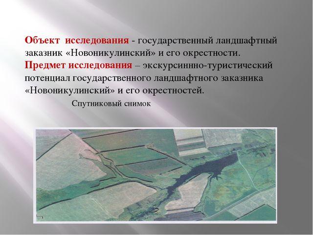Объект исследования - государственный ландшафтный заказник «Новоникулинский»...