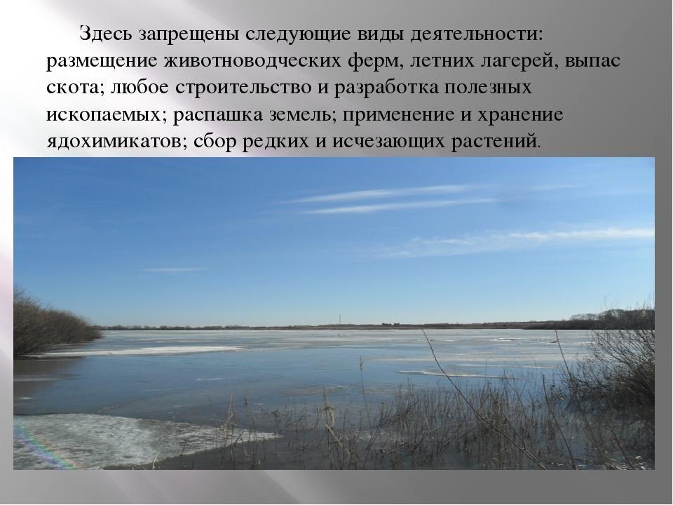 Здесь запрещены следующие виды деятельности: размещение животноводческих фер...