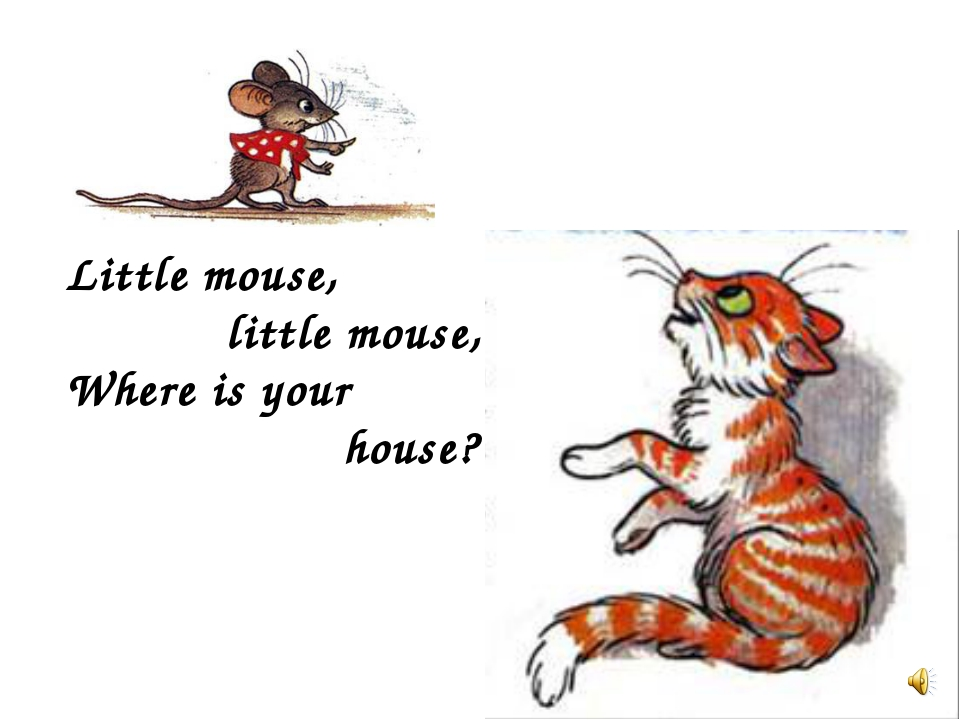 Little mouse, little mouse, Where is your house?