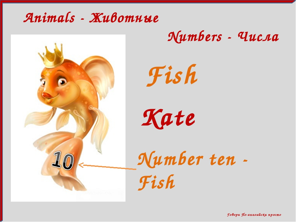 Говори По-английски просто Numbers - Числа Animals - Животные Fish Kate Numb...