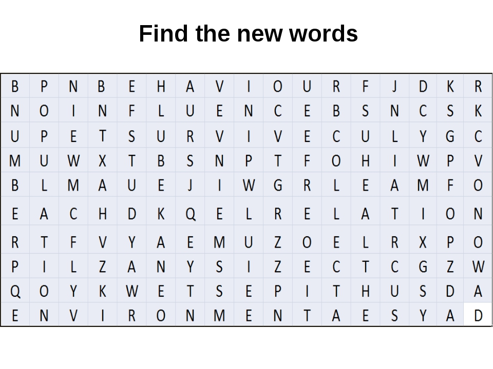 Find the new words