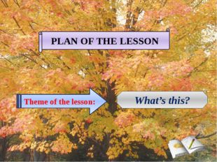 PLAN OF THE LESSON Theme of the lesson: What's this?