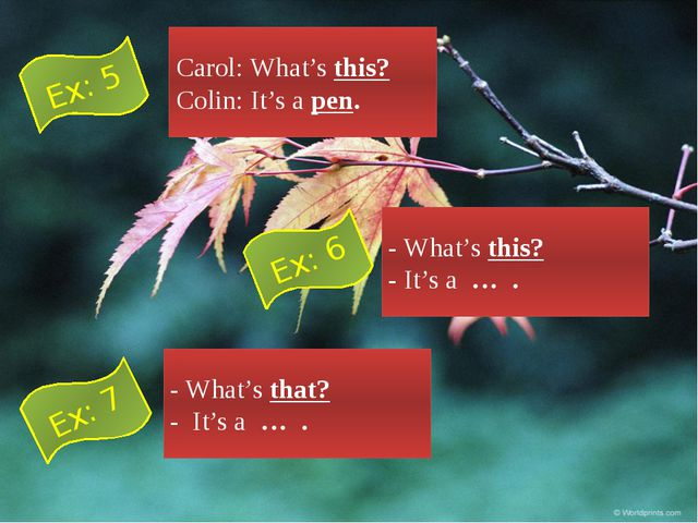 Carol: What's this? Colin: It's a pen. - What's this? - It's a … . - What's t...
