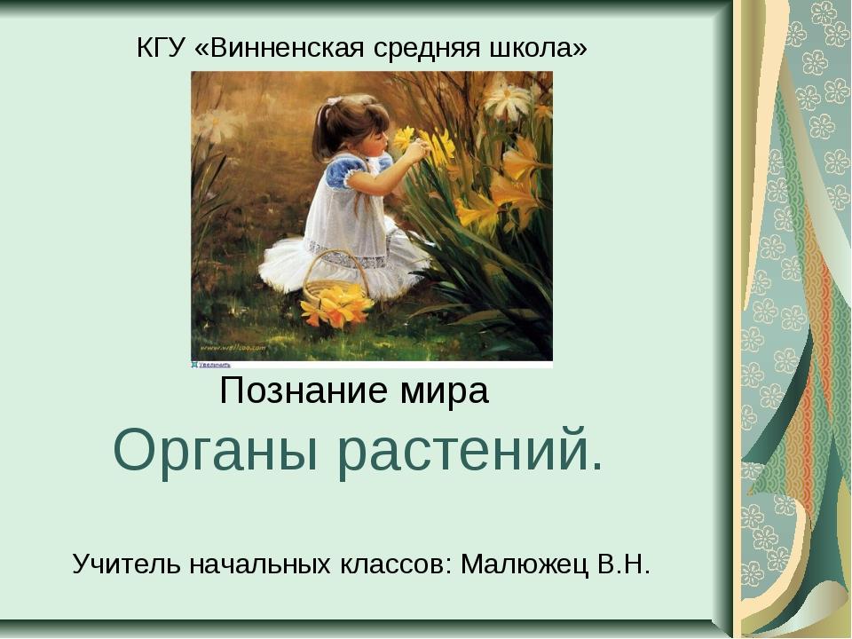 Познание мира Органы растений. КГУ «Винненская средняя школа» Учитель начальн...