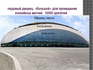 ледовый дворец «большой» для проведения хоккейных матчей. 12000 зрителей
