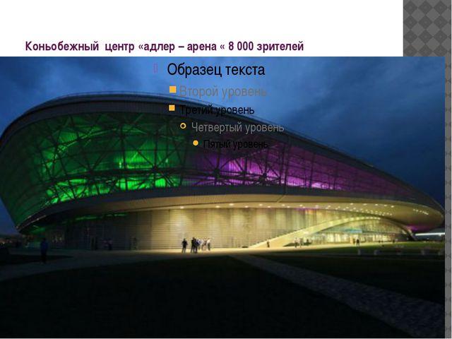 Коньобежный центр «адлер – арена « 8 000 зрителей