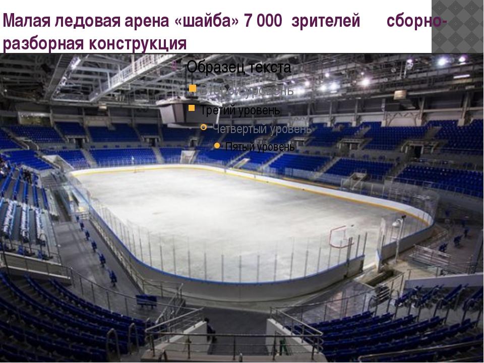 Малая ледовая арена «шайба» 7 000 зрителей сборно- разборная конструкция