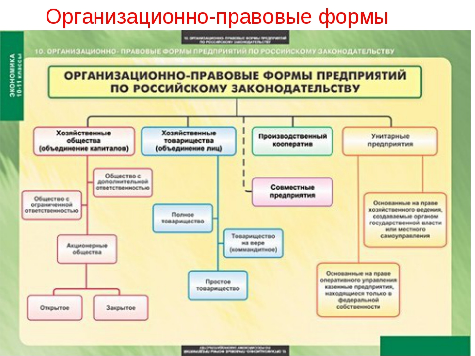 Организационно-правовые формы бизнеса