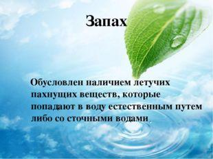 Запах Обусловлен наличием летучих пахнущих веществ, которые попадают в воду е