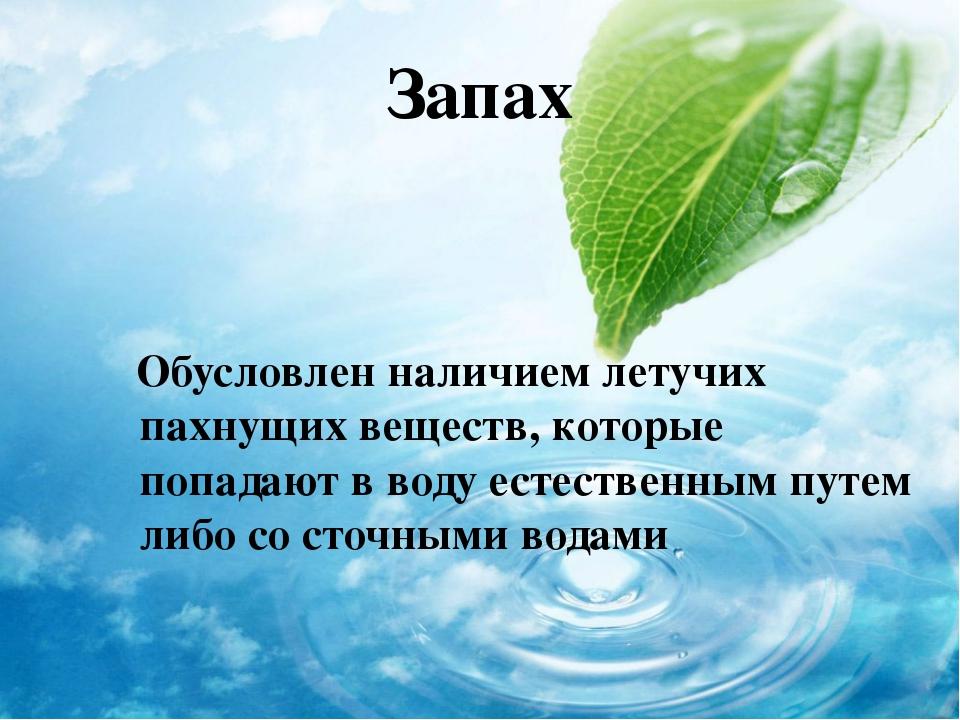 Запах Обусловлен наличием летучих пахнущих веществ, которые попадают в воду е...