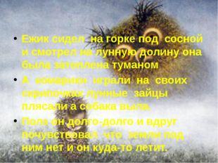Ежик сидел на горке под сосной и смотрел на лунную долину она была затоплена