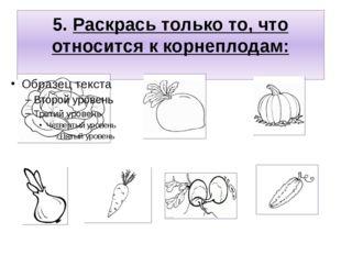 5. Раскрась только то, что относится к корнеплодам:
