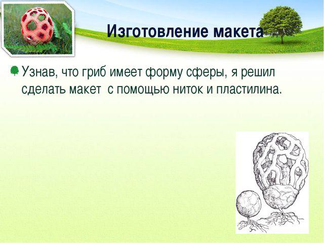 Изготовление макета Узнав, что гриб имеет форму сферы, я решил сделать макет...