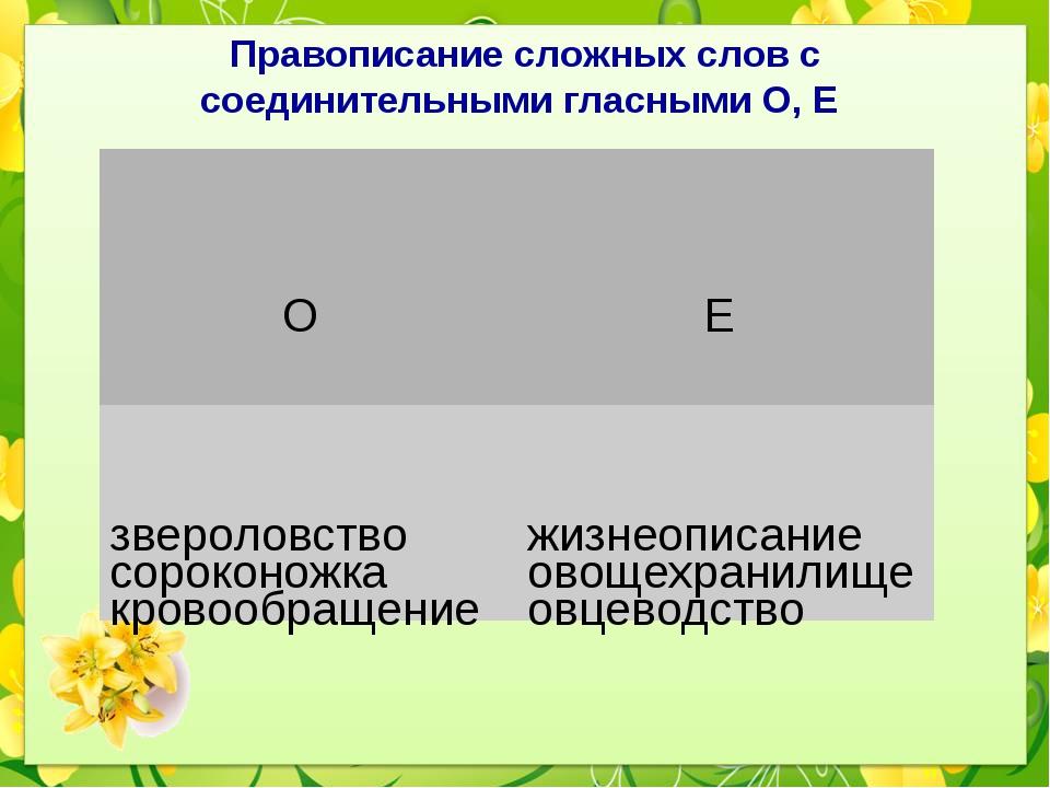 Правописание сложных слов с соединительными гласными О, Е О    Е звероловс...