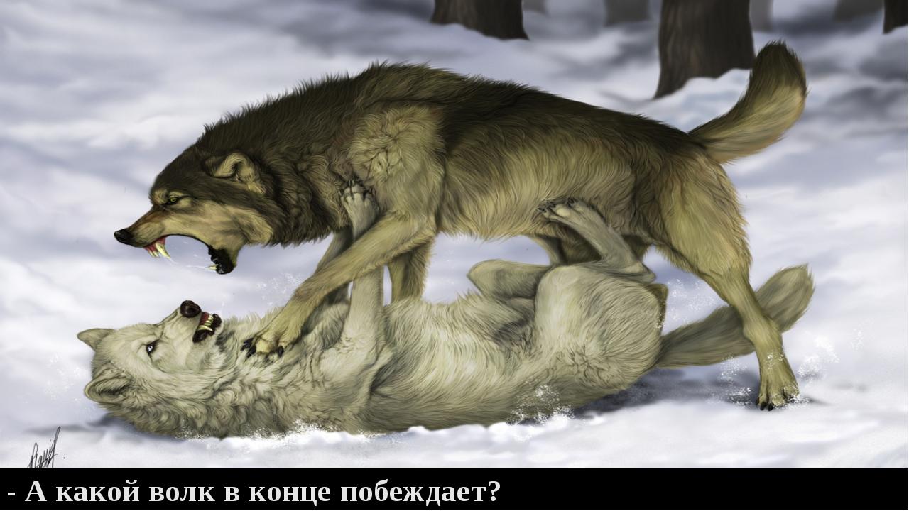 - А какой волк в конце побеждает?