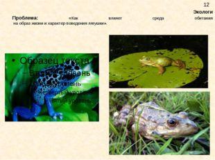 Экологи Проблема: «Как влияет среда обитания на образ жизни и характер повед