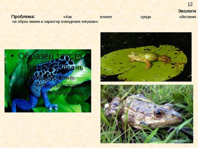 Экологи Проблема: «Как влияет среда обитания на образ жизни и характер повед...