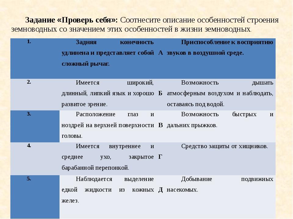 Задание «Проверь себя»: Соотнесите описание особенностей строения земноводных...