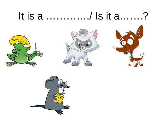 It is a …………./ Is it a…….?