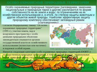 """Согласно Федеральному Закону """"Об особо охраняемых природных территориях"""" (199"""