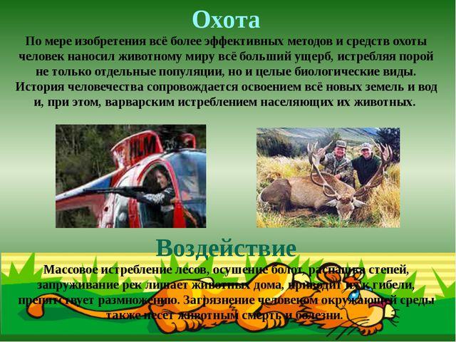 Охота По мере изобретения всё более эффективных методов и средств охоты челов...