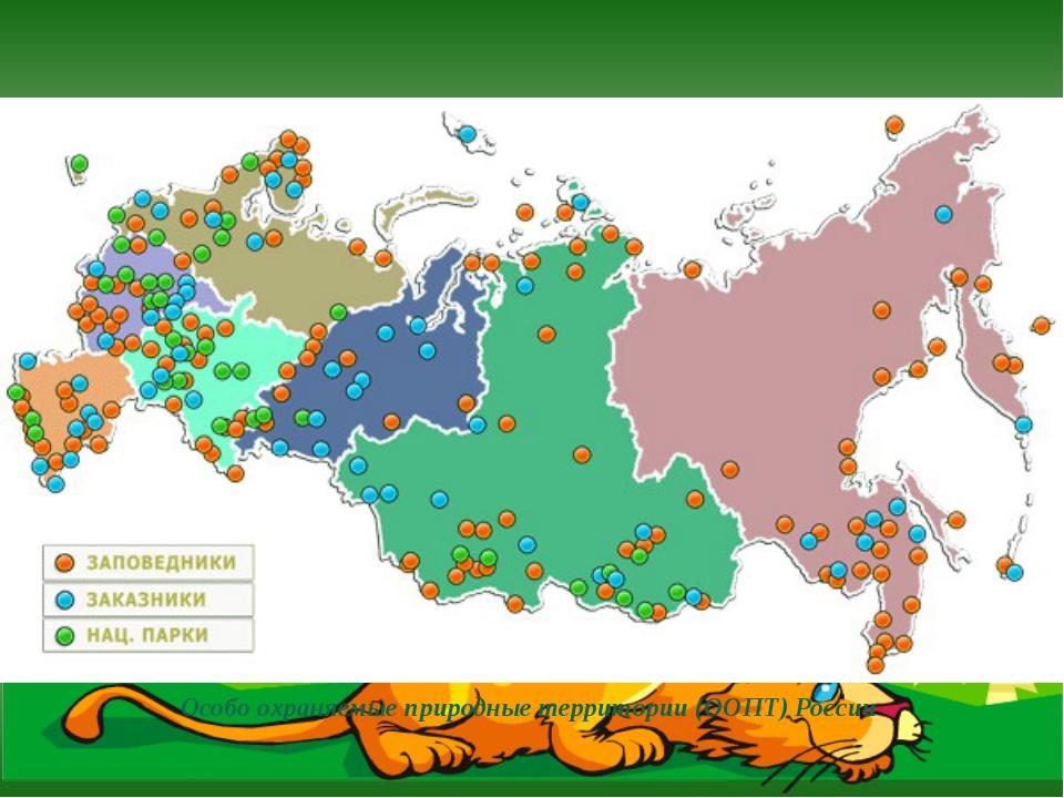 Особо охраняемые природные территории (ООПТ) России