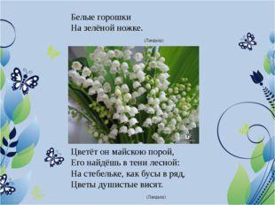 Белые горошки На зелёной ножке. (Ландыш) Цветёт он майскою порой, Его найдёшь