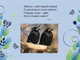 Вместе с этой черной птицей К нам весна по полю мчится. Огороду, полю – врач.