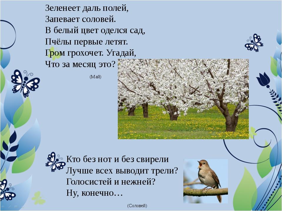 Зеленеет даль полей, Запевает соловей. В белый цвет оделся сад, Пчёлы первые...