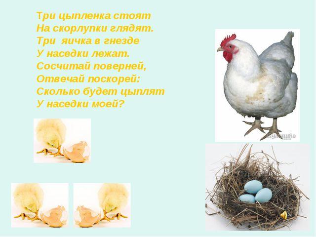 Три цыпленка стоят На скорлупки глядят. Три яичка в гнезде У наседки лежат. С...
