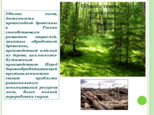 Обилие лесов, доступность превосходной древесины в России способствовали разв