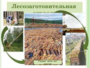 Лесозаготовительная отрасль Сплав леса по рекам