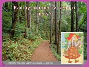 Помоги Красной шапочке пройти через лес