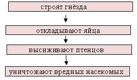 hello_html_m4642228e.jpg