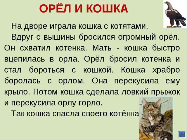 ОРЁЛ И КОШКА На дворе играла кошка с котятами. Вдруг с вышины бросился огромн...