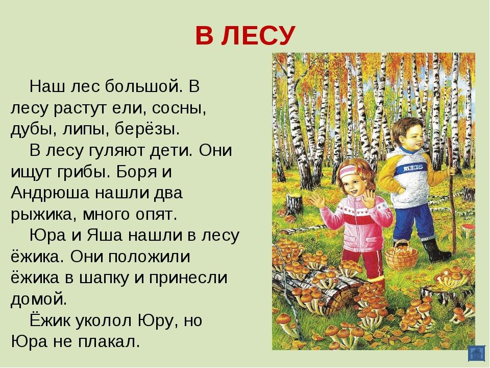 В ЛЕСУ Наш лес большой. В лесу растут ели, сосны, дубы, липы, берёзы. В лесу...