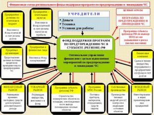 * Программа субъекта (региона) РФ по выводу ПОО из зон повышенного риска (жил