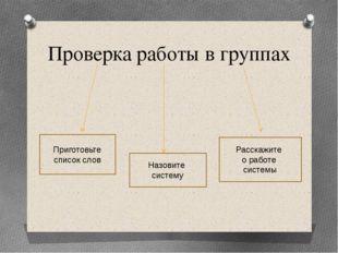 Проверка работы в группах Приготовьте список слов Назовите систему Расскажите
