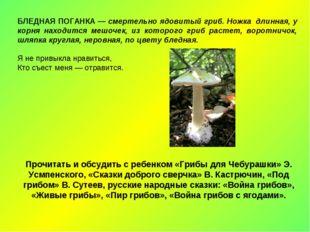 БЛЕДНАЯ ПОГАНКА — смертельно ядовитый гриб. Ножка длинная, у корня находится