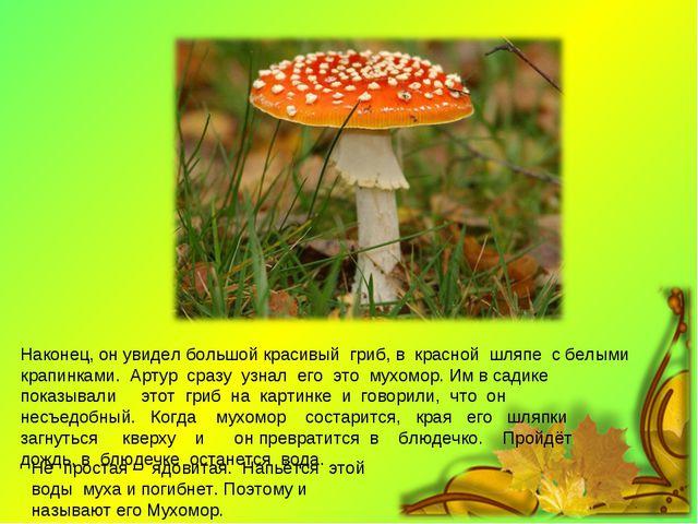 Наконец, он увидел большой красивый гриб, в красной шляпе с белыми крапинками...