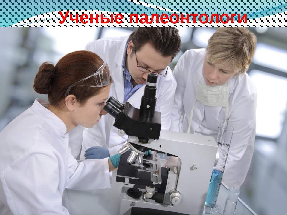 Ученые палеонтологи