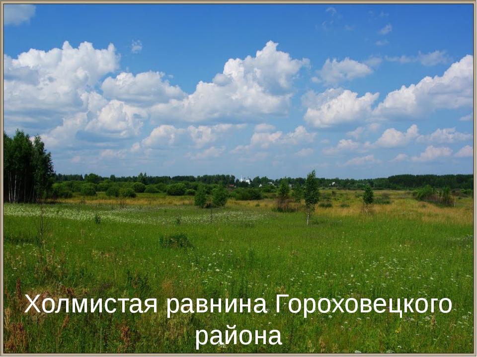 Холмистая равнина Гороховецкого района