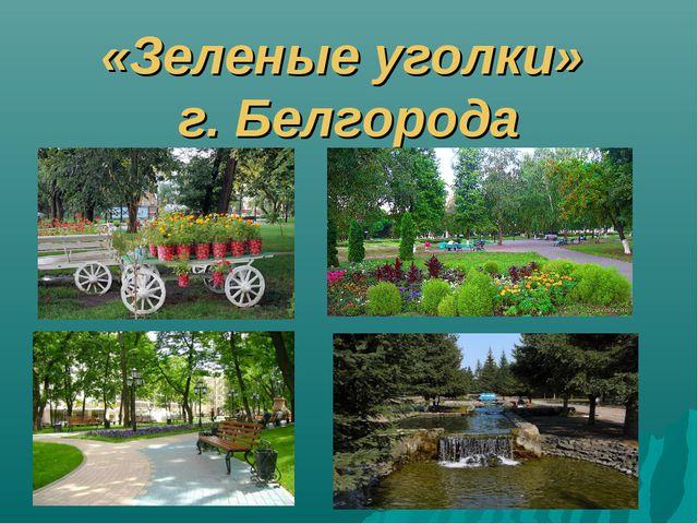 «Зеленые уголки» г. Белгорода