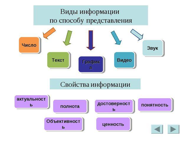 Виды информации по способу представления Число Текст Графика Видео Звук Свойс...