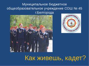Муниципальное бюджетное общеобразовательное учреждение СОШ № 45 г.Белгорода К