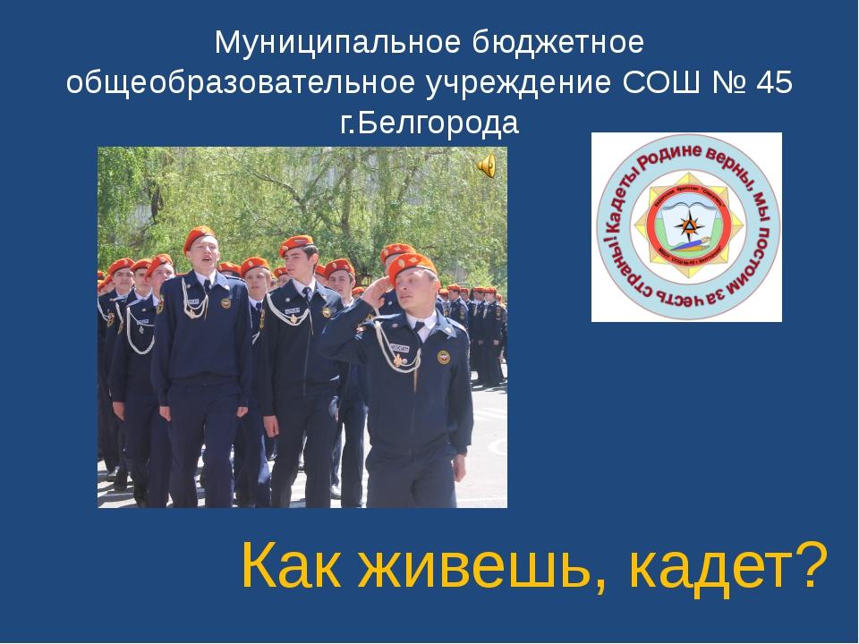 Муниципальное бюджетное общеобразовательное учреждение СОШ № 45 г.Белгорода К...