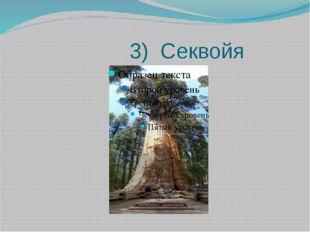 3) Секвойя