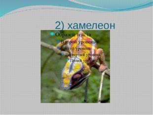 2) хамелеон