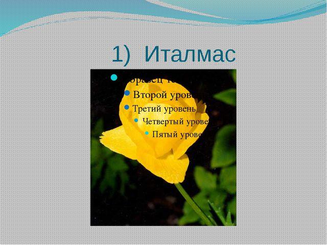 1) Италмас